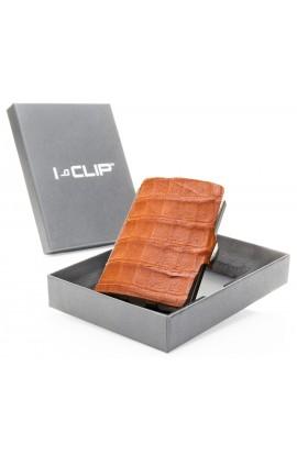 I-CLIP-Kajman - Cognac