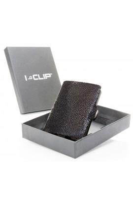 I-CLIP Rejnok – antracitová šedá new